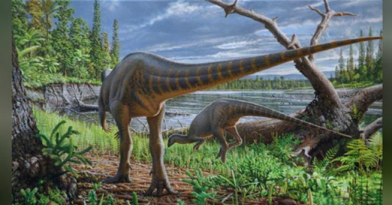 https: img.okeinfo.net content 2018 01 14 56 1844668 peneliti-temukan-fosil-dinosaurus-di-sungai-purba-australia-DNK7J6JG6J.jpg