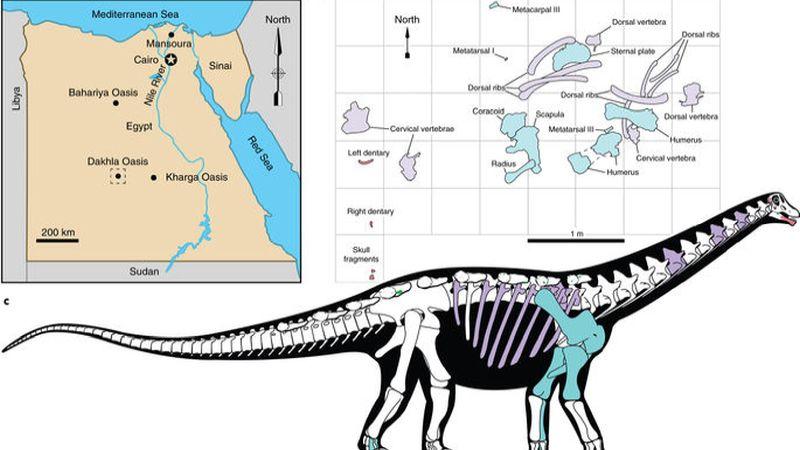 https: img.okeinfo.net content 2018 01 30 56 1852277 fosil-berusia-80-juta-tahun-berukuran-bus-dan-lengkap-ditemukan-di-afrika-TRtb55hI0n.jpg