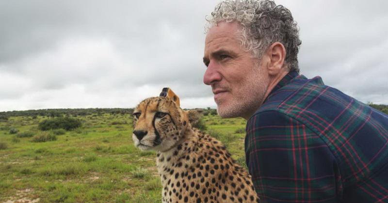 https: img.okeinfo.net content 2018 02 02 56 1853955 unik-ini-jadinya-jika-cheetah-jadi-kameramen-n4zvvVNDwD.jpg