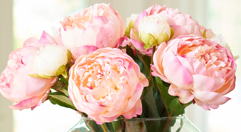 https: img.okeinfo.net content 2018 02 13 194 1859041 bunga-peony-khas-paris-bisa-dijadikan-parfum-rambut-UaNpRRoME2.jpg