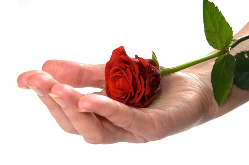 https: img.okeinfo.net content 2018 02 13 196 1859171 saat-valentine-mawar-merah-menjadi-barang-haram-di-arab-saudi-zsa5qw3Koa.jpg