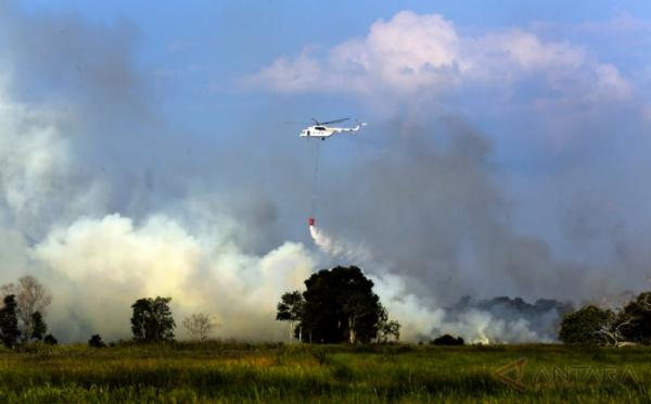 https: img.okeinfo.net content 2018 02 14 340 1859454 182-desa-di-kalimantan-barat-rawan-kebakaran-hutan-dan-lahan-ZSMDQcmjI1.jpg