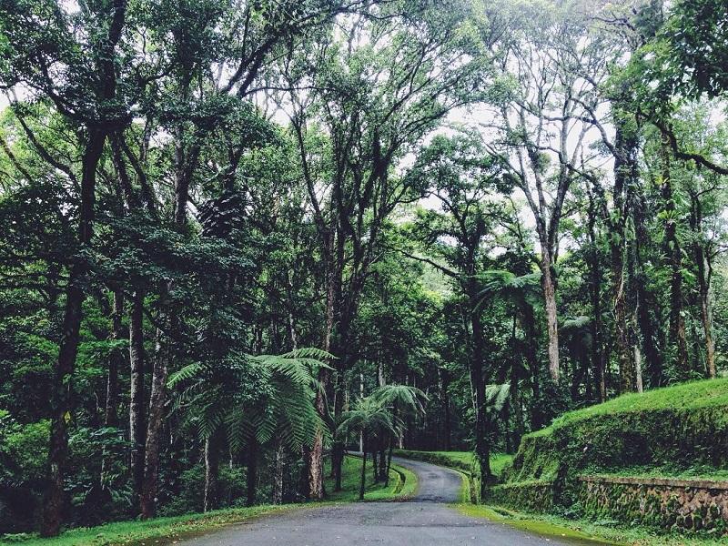 3 Destinasi Wisata Berbasis Konservasi Yang Wajib Disambangi
