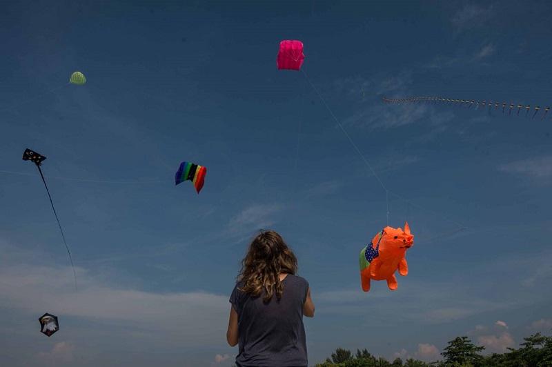 https: img.okeinfo.net content 2018 05 15 406 1898509 pelayang-dari-6-negara-terbangkan-puluhan-layang-layang-dalam-rhino-kites-festival-wq6RXQK6X0.jpg