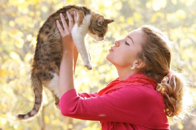 https: img.okeinfo.net content 2018 05 17 481 1899596 hobi-pelihara-kucing-ini-5-manfaatnya-bagi-kesehatan-anda-1xIWg8Ys70.jpeg
