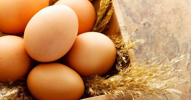 https: img.okeinfo.net content 2018 07 04 481 1917640 tidak-rugi-makan-telur-setiap-hari-ini-5-manfaat-sehatnya-8U78ah60Hn.jpg
