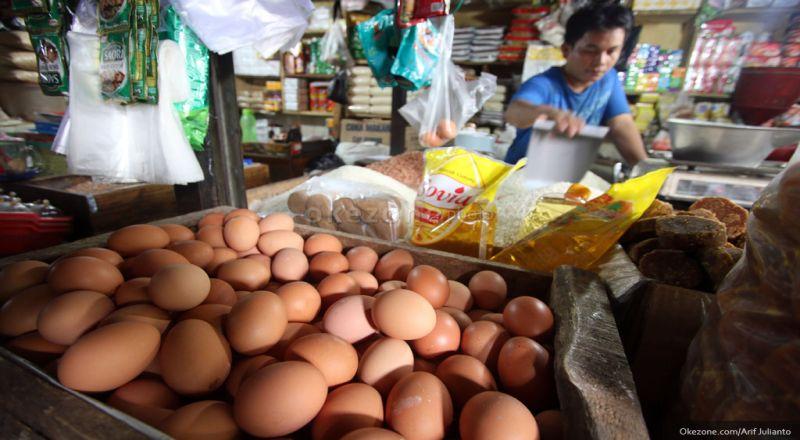 https: img.okeinfo.net content 2018 07 17 320 1923365 perjalanan-di-balik-harga-telur-ayam-yang-meroket-pZotMjBUfl.jpg