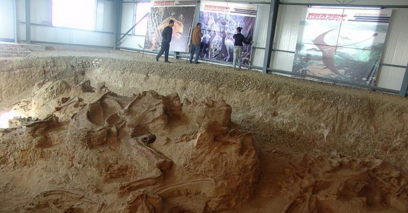 https: img.okeinfo.net content 2018 07 25 56 1927346 ditemukan-spesies-baru-dinosaurus-amazing-dragon-di-china-30ZjldDYfg.jpg