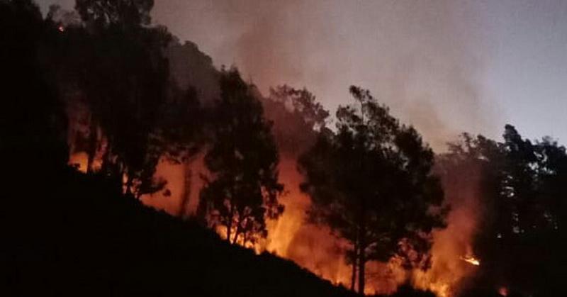 https: img.okeinfo.net content 2018 08 18 340 1938275 200-pendaki-dievakuasi-akibat-kebakaran-di-kawasan-gunung-buthak-CIE2m4mxd0.jpg