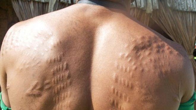 https: img.okeinfo.net content 2018 08 30 18 1943675 mengapa-sejumlah-pria-papua-nugini-menyayat-kulit-agar-mirip-buaya-MvkAeOcQnx.jpg