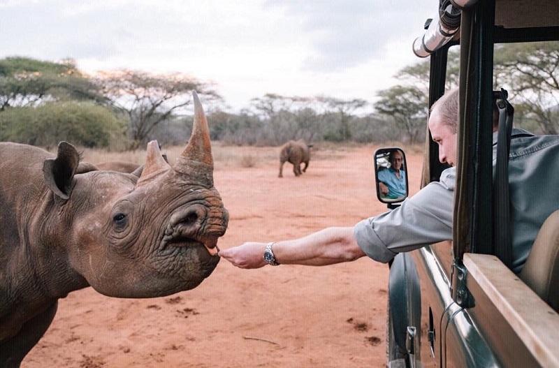 https: img.okeinfo.net content 2018 09 29 406 1957467 pelajari-konservasi-di-tanzania-pangeran-william-bertemu-badak-hingga-gajah-0oOKnMLrH2.jpg