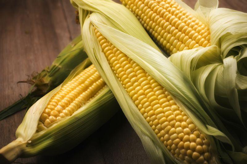 https: img.okeinfo.net content 2018 10 12 298 1963155 10-manfaat-jagung-sebagai-pengganti-nasi-anti-hipertensi-dan-diabetes-B7RZggfXsj.jpg