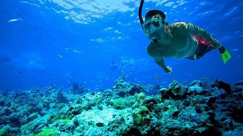 https: img.okeinfo.net content 2018 10 12 406 1963294 festival-pesona-raja-ampat-tawarkan-wisata-snorkeling-terbaik-dunia-QSsRqDNeWH.jpg