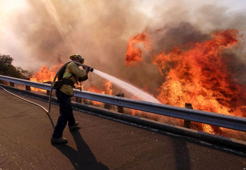 https: img.okeinfo.net content 2018 11 13 18 1977427 kebakaran-hutan-di-california-korban-bertambah-44-orang-ratusan-hilang-ngFBD3KaCy.jpg