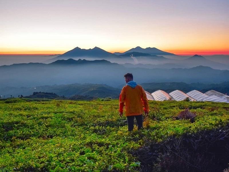 https: img.okeinfo.net content 2018 11 16 406 1978947 destinasi-berburu-panorama-kabut-yang-mempesona-mulai-dari-gunung-halimun-hingga-bukit-kingkong-bromo-1RpTOtsRQq.jpg