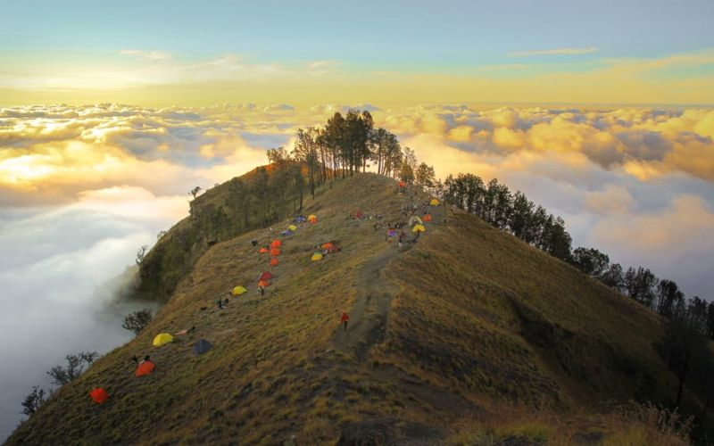 https: img.okeinfo.net content 2018 11 22 406 1980954 jalur-pendakian-gunung-rinjani-resmi-dibuka-paska-gempa-UHaThi42Ls.jpg