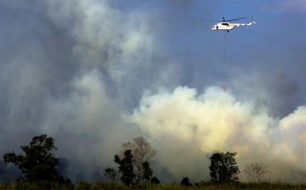 https: img.okeinfo.net content 2018 11 29 340 1984597 sepanjang-2018-5-776-hektar-hutan-dan-lahan-di-riau-terbakar-G3n0PV1H60.jpg