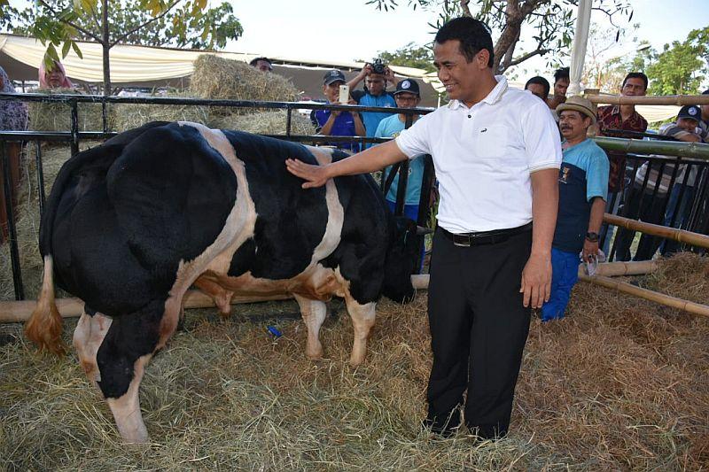 https: img.okeinfo.net content 2018 12 24 320 1995454 upsus-siwab-tingkatkan-populasi-sapi-di-ri-dan-kesejahteraan-peternak-t2HpAx5Of0.jpg
