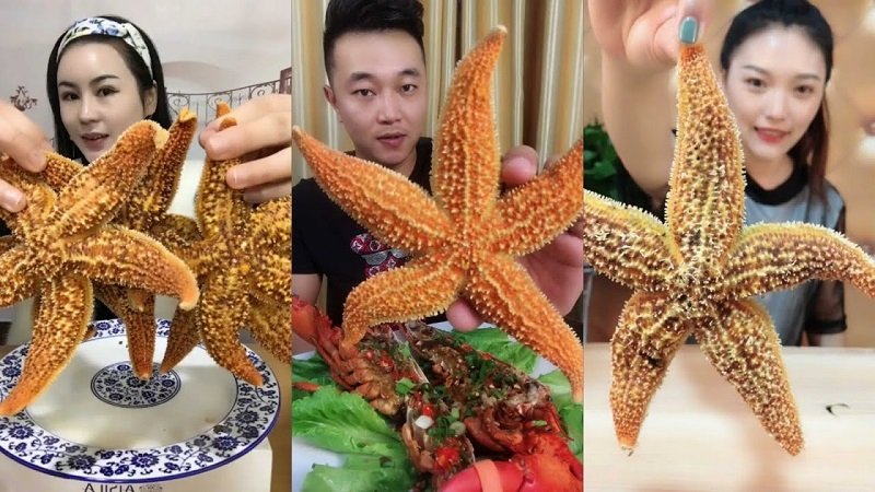 https: img.okeinfo.net content 2019 01 09 298 2002284 tren-mukbang-bintang-laut-semakin-digandrungi-amankah-dikonsumsi-8m4oP3woqd.jpg