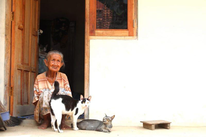 https: img.okeinfo.net content 2019 01 11 512 2002859 cerita-haru-mbah-kusnari-dan-5-kucing-yang-punya-rumah-baru-HVbrwcqtXB.jpg