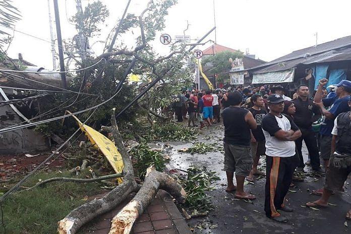 https: img.okeinfo.net content 2019 01 25 244 2009188 siklon-tropis-riley-landa-bali-puluhan-pohon-tumbang-hingga-sebabkan-1-tewas-KKsNrnYbcj.jpg