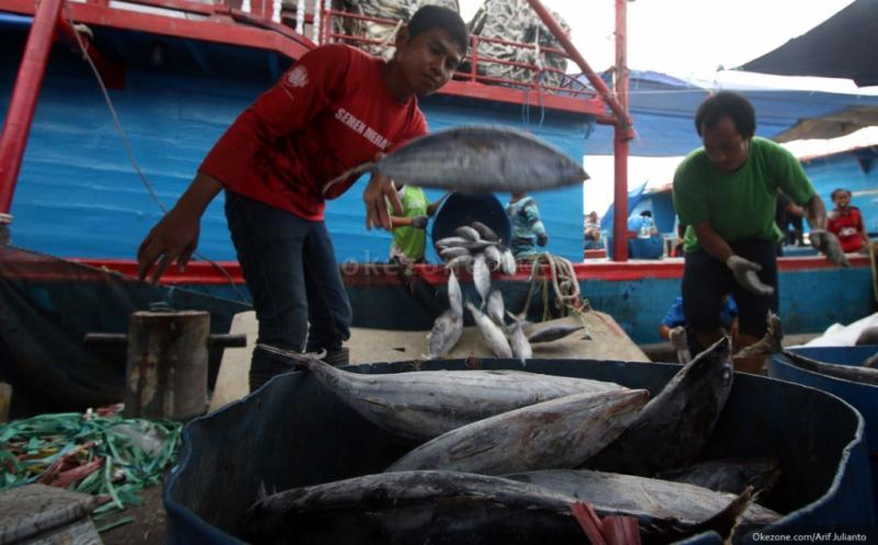 https: img.okeinfo.net content 2019 02 01 320 2012511 10-negara-penghasil-ikan-terbesar-di-dunia-ada-indonesia-9Y2rnzFCGq.jpg