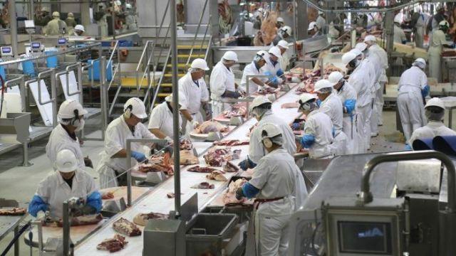 https: img.okeinfo.net content 2019 02 07 18 2014863 kisah-anak-anak-muda-indonesia-bekerja-keras-di-pabrik-daging-australia-39yNK1fkG8.jpg