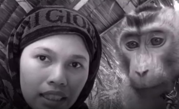 https: img.okeinfo.net content 2019 02 11 194 2016587 aksi-kocak-wanita-asal-pekanbaru-perawatan-kecantikan-dokternya-monyet-FWplf2tzki.jpg