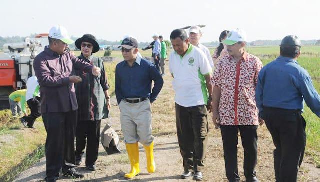 https: img.okeinfo.net content 2019 02 13 320 2017162 varietas-padi-indonesia-dapat-pujian-dari-sultan-brunai-darussalam-zpTD9nVECx.jpeg
