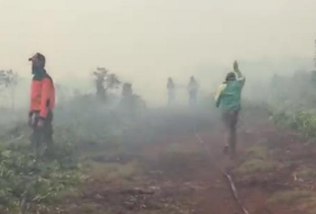 https: img.okeinfo.net content 2019 02 18 340 2019710 kebakaran-hutan-dan-lahan-riau-meluas-841-hektare-terbakar-8HOZ0Fqxa0.jpg