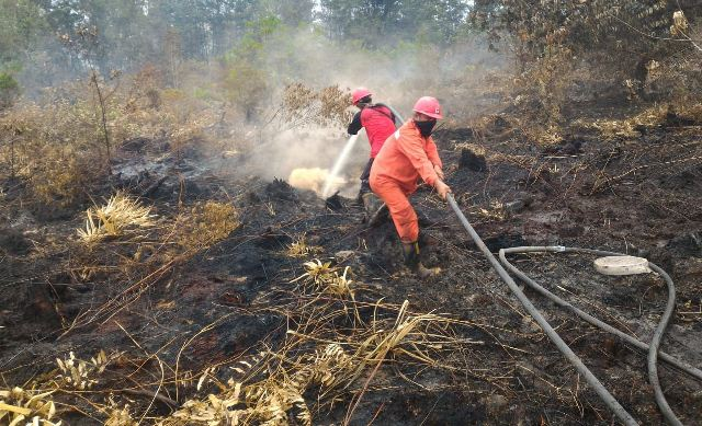 https: img.okeinfo.net content 2019 02 27 340 2023618 atasi-kebakaran-hutan-dan-lahan-di-riau-tni-bikin-hujan-buatan-idYF7R1WjR.jpg