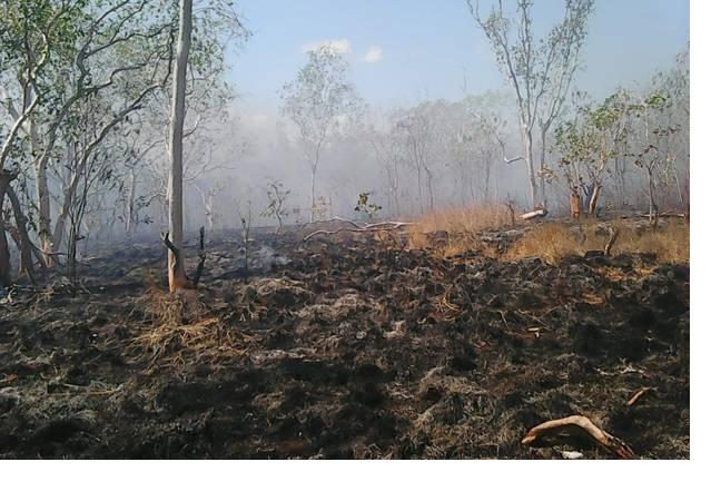 Hutan Konservasi Taman Wisata Alam Sungai Dumai Riau