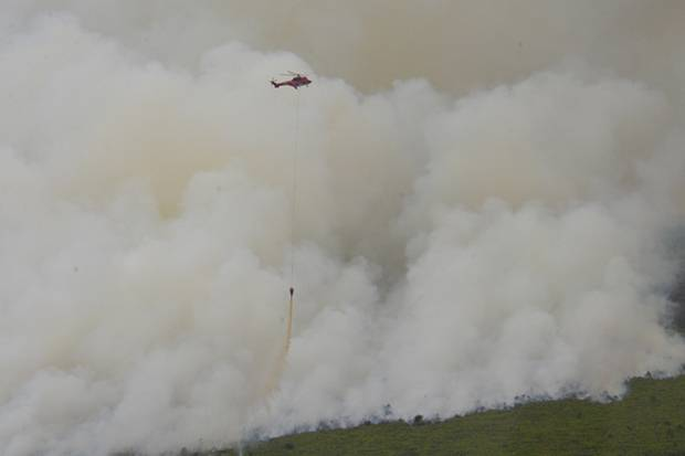 https: img.okeinfo.net content 2019 03 12 340 2028704 10-helikopter-dan-1-pesawat-dikerahkan-untuk-atasi-kebakaran-hutan-riau-lPxKCIxmoq.jpg