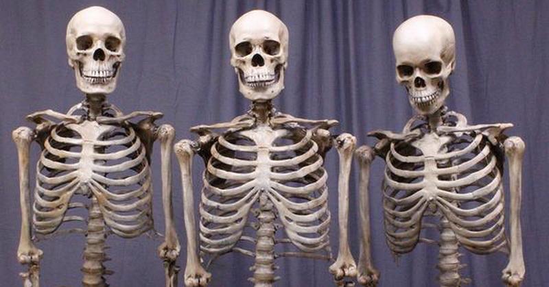 https: img.okeinfo.net content 2019 03 15 56 2030634 ini-bagian-tubuh-jenazah-yang-tidak-akan-hancur-fK3dnBHCIv.jpg