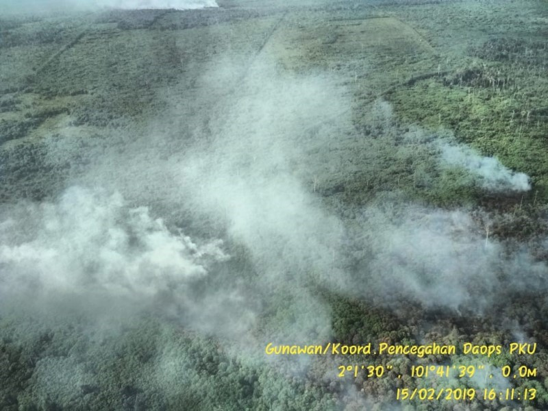 https: img.okeinfo.net content 2019 03 25 340 2034538 kabakaran-lahan-dan-hutan-di-riau-meluas-hingga-2-719-hektare-cxjpUXKE0y.jpg