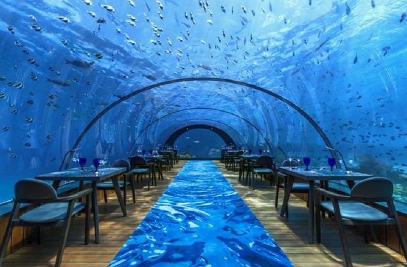 https: img.okeinfo.net content 2019 04 04 298 2039212 mengintip-indah-dan-mewahnya-restoran-bawah-laut-pertama-di-eropa-mnu0rIe5hF.jpg