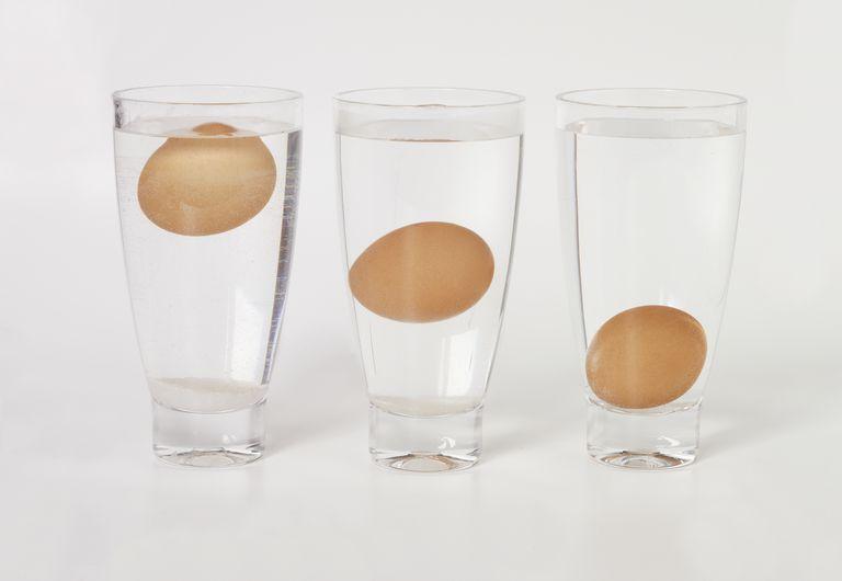 https: img.okeinfo.net content 2019 04 18 298 2045392 4-cara-membedakan-telur-segar-dan-tidak-layak-konsumsi-OYPkjOvV4d.jpg
