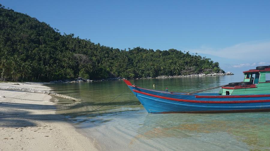 https: img.okeinfo.net content 2019 05 05 406 2051684 melihat-dari-dekat-konservasi-penyu-di-pulau-pahat-bhNdiRACyw.jpg