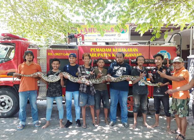 https: img.okeinfo.net content 2019 05 19 512 2057587 ular-piton-4-meter-sembunyi-di-saluran-air-gegerkan-warga-e2WsRCWRl3.png