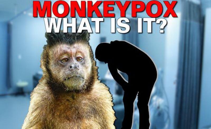 https: img.okeinfo.net content 2019 05 29 481 2061874 mengenal-virus-cacar-monyet-dan-cara-pencegahannya-3MEZHUikOj.jpg