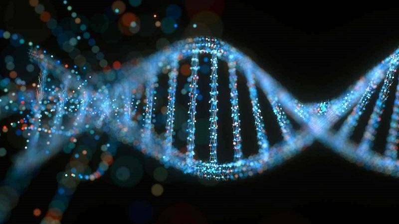 https: img.okeinfo.net content 2019 06 20 481 2068749 studi-penelitian-hampir-100-varian-gen-manusia-tingkatkan-risiko-kanker-CPu6aOp74b.jpg