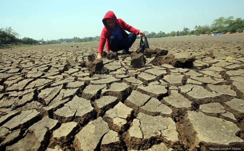 https: img.okeinfo.net content 2019 06 25 337 2070753 35-persen-wilayah-indonesia-masuki-musim-kemarau-waspada-bencana-kekeringan-tPxElgmHHA.jpg