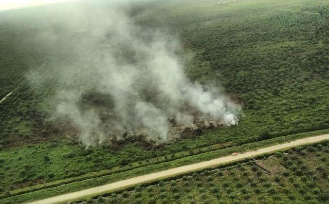 https: img.okeinfo.net content 2019 06 25 340 2070746 kebakaran-hutan-dan-lahan-di-riau-capai-3-147-hektare-XX8e53xvvX.jpg