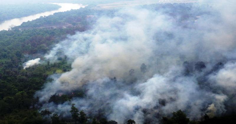 https: img.okeinfo.net content 2019 07 05 340 2075286 bpbd-dibantu-tni-berhasil-padamkan-kebakaran-lahan-di-nagan-raya-n8sLWA83Hj.jpg