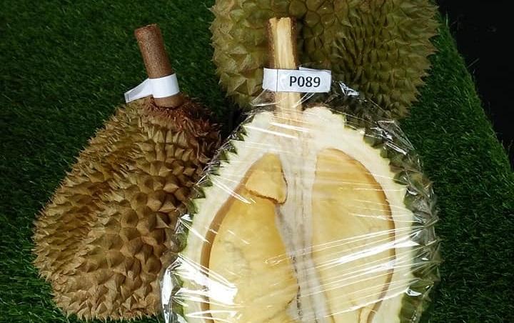 https: img.okeinfo.net content 2019 07 09 298 2076626 ada-durian-premium-baru-lebih-enak-dari-musang-king-nQQ1XlL9BI.jpg