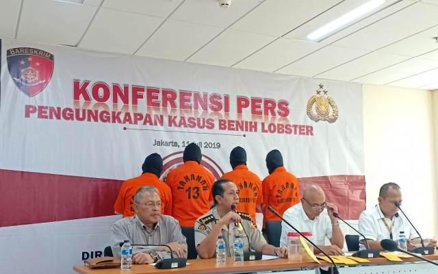 https: img.okeinfo.net content 2019 07 11 337 2077546 polri-gagalkan-penyelundupan-benih-lobster-ke-singapura-3VWts3ZPfh.jpg