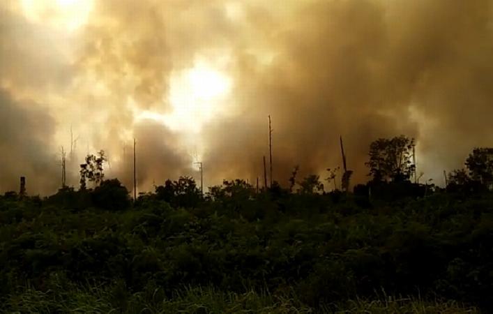https: img.okeinfo.net content 2019 07 21 340 2081744 upaya-padamkan-api-karhutla-52-ribu-kg-garam-ditebar-di-langit-riau-pSk4Z5D2UQ.jpg