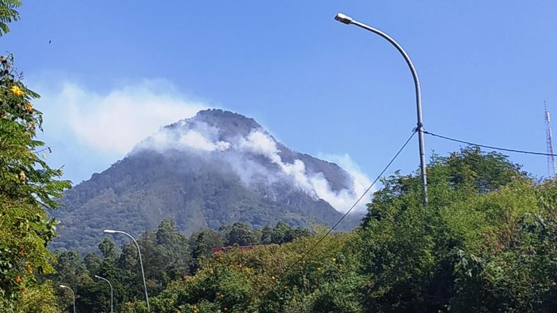 https: img.okeinfo.net content 2019 07 22 519 2081914 kebakaran-di-hutan-gunung-panderman-meluas-bpbd-tetapkan-tanggap-darurat-bencana-n0xQZWBPUb.jpg