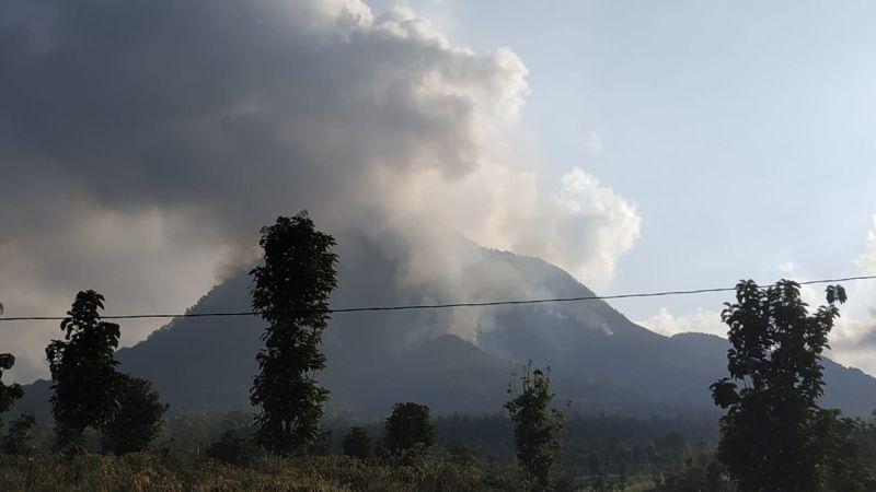 https: img.okeinfo.net content 2019 08 03 519 2087149 23-kasus-kebakaran-hutan-di-jatim-mayoritas-karena-ulah-manusia-eXWqodp6ci.jpg