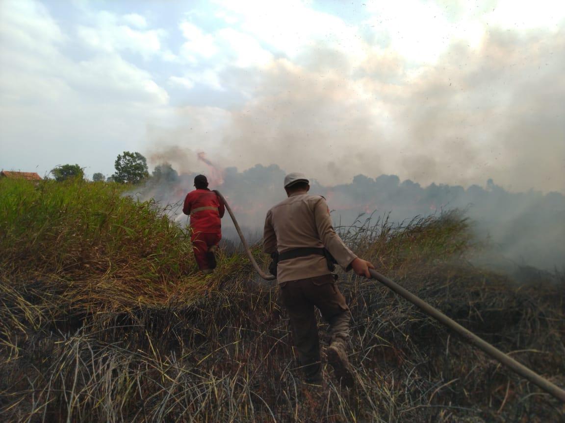 https: img.okeinfo.net content 2019 08 06 610 2088637 dua-hari-api-tak-padam-kebakaran-lahan-di-ogan-ilir-terus-meluas-jNVcWdzoZe.jpg